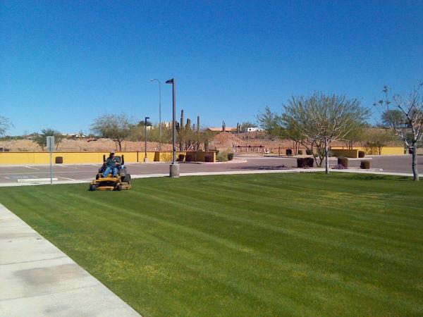 Commercial Mowing Quailty Care Landscape