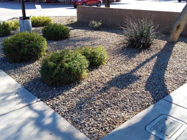 Commercial Landscapers in Phoenix