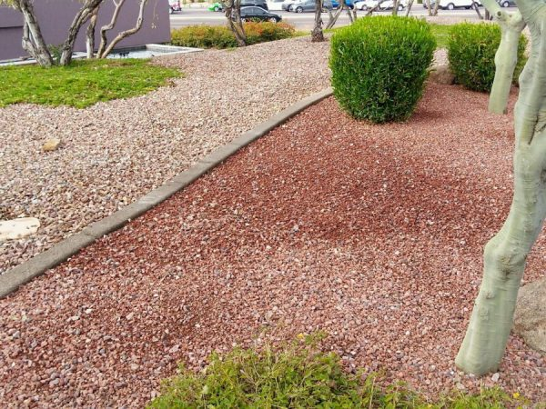 Commercial Landscaping Glendale, AZ