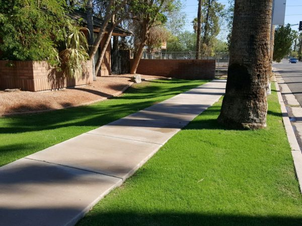 Commercial Landscaping Services Arizona
