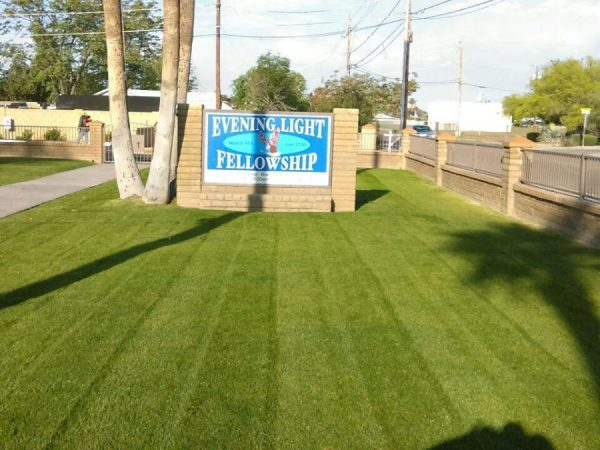 Commercial Landscaping in Avondale