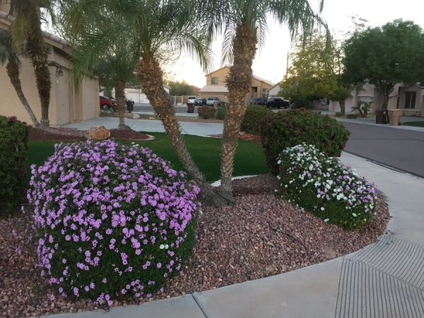 Quality Care Landscape Management Front Yard Landscaper