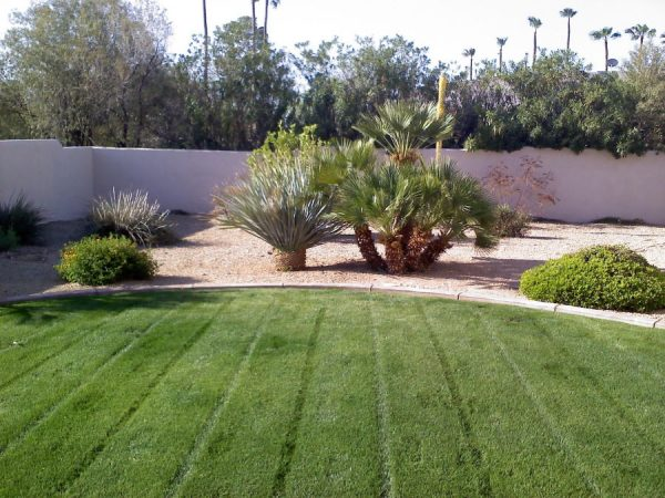 Residential Lawn Care Quality Care Landscape